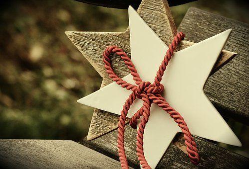 Poinsettia, Star, Christmas, Loop
