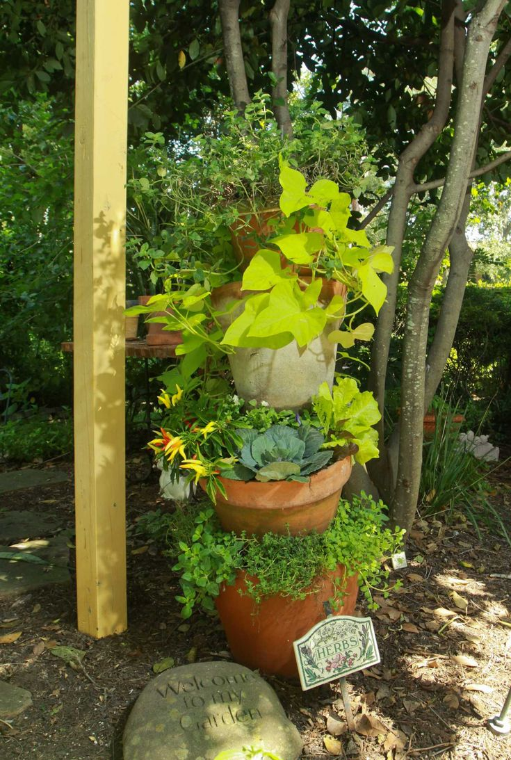 Heads up: Herbs thrive in tipsy terra-cotta tower