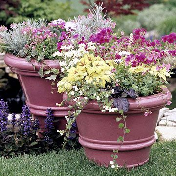 Create Drama with Color: Create Dramas, Plants Colors, Cheap Planters, Pretty Colors, Create Colors, Awesome Ideas, Colors Gardens And Pl, Bright Colors,  Flowerpot