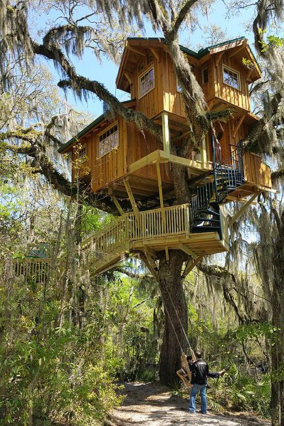Spirit of the suwannee live oak fl tree house by the tree house guys · les arbrescabanesmagnifiques maisons