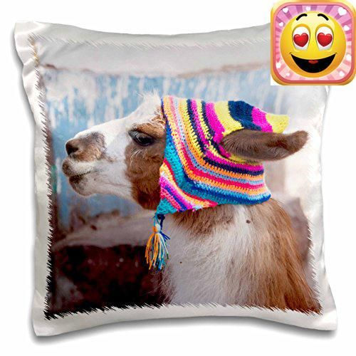 #stylish #Peru, Llama in a village - SA17 Jri0005 - jutta riegel pillow case is a great way to add a splash of style to any room. The unique design of this 16x 1...