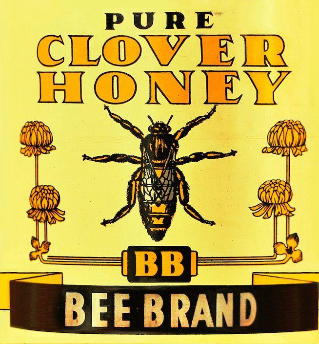 Bee Brand Retro 1950s Honey Tin Design FRAMED Illustration Themed Kitchen Wall Art