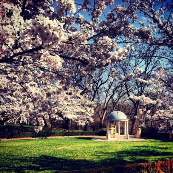Omni Shoreham: Washington DC wedding venue readies for wedding season