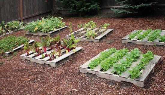 Interessante Diy Garten Ideen Nz #Garten #Gartenplanung #GartenIdeen