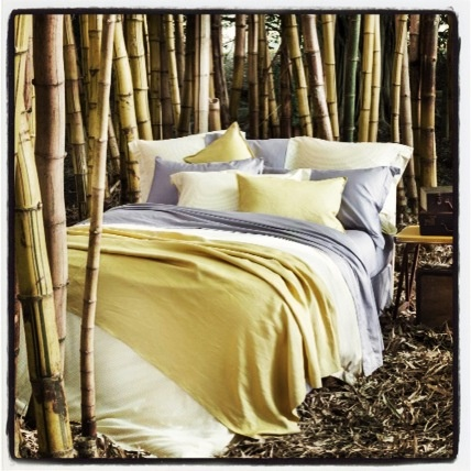 The softest sheets ever and beautiful colours and print combos