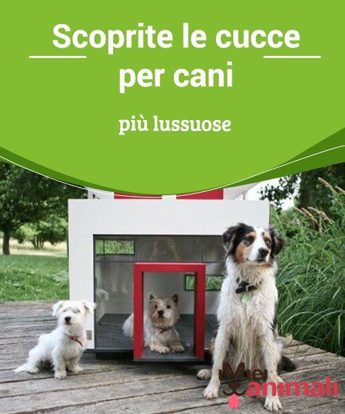 Oltre 25 fantastiche idee su cucce di cani su pinterest - Cucce per cani ikea ...