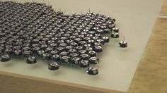 Computer science researchers at Harvard have created a group of tiny robots that can work together to accomplish tasks. That in and of itself isn't revolutionary–plenty of teams have managed to link a few simple robots together and issue them commands. However, the Kilobots are on a completely different level. There are 1,024 of them all moving in concert, which is why they're called KILObots.