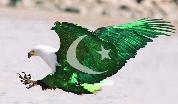 14 August 2012 Pakistan Flag Shaheen Eagle Wallpapers