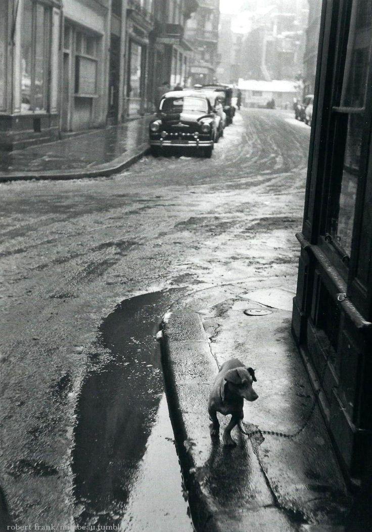 The dashchund, Paris 1950s. by Robert Frank