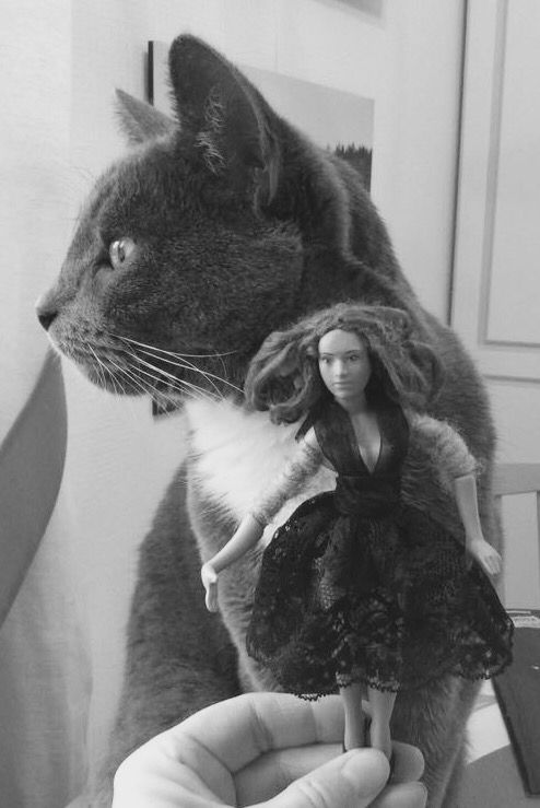 Rose, doll by Taru Astikainen and Sulo Armas, our cat ❤️