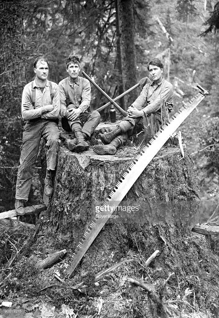 Darius Kinsey (1869–1945) was a photographer active in western Washington State from 1890 to 1940. He is best known for his images of loggers and all phases of the region's lumber industry