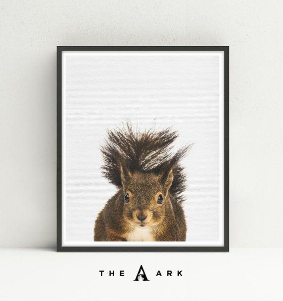 #021 - écureuil instantané BRICOLAGE imprimable par la boutique de l'arche de Noé  Un mignon imprimable numérique Téléchargement instantané de l'écureuil impression par la boutique de l'arche de Noé!  C'est l'art de la murale parfaite pour n'importe quelle chambre d'enfant, chambre d'enfant ou même un salon moderne. Cette photo impression ressemble beaucoup à l'unité ou choisissez une sélection d'autres animaux de notre magasin et afficher comme un ensemble de 2 ou 3 dans un cadre noir…