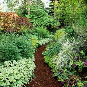 Wood mulch path.  Love the tip of using shredded mulch which stays in place better than bark or wood chips.