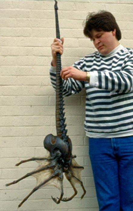 ALIEN on EARTH straight out of the movie! scientists  discovered the body of a giant sea spider like organism in antarctic waters. the origin of this species is unknown, and it is unclear...