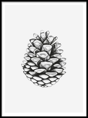 An art poster with an illustration of a pine cone, in a realistic style, hand-drawn.  You can combine it with other hand-drawn motifs or typography prints. Head over to our webshop for inspiration and create your own personal picture wall with our art prints and posters. Desenio.co.uk