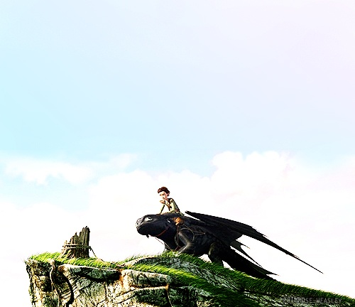 How to Train Your Dragon - Toothless - Hiccup - Test Drive