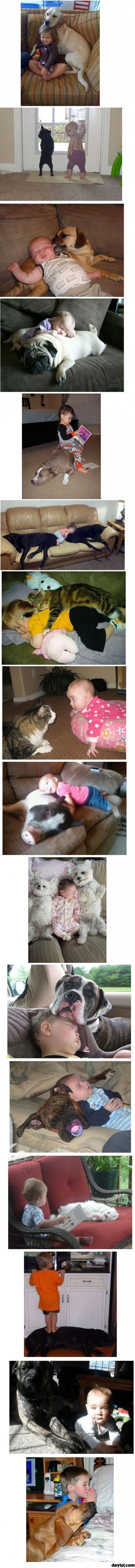 Kids and animals