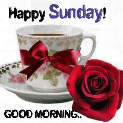 Happy Sunday Good Morning