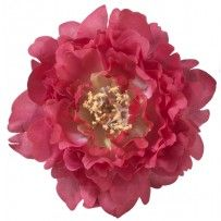 Haarspeld bloem Kendall pinch clip fuchsia