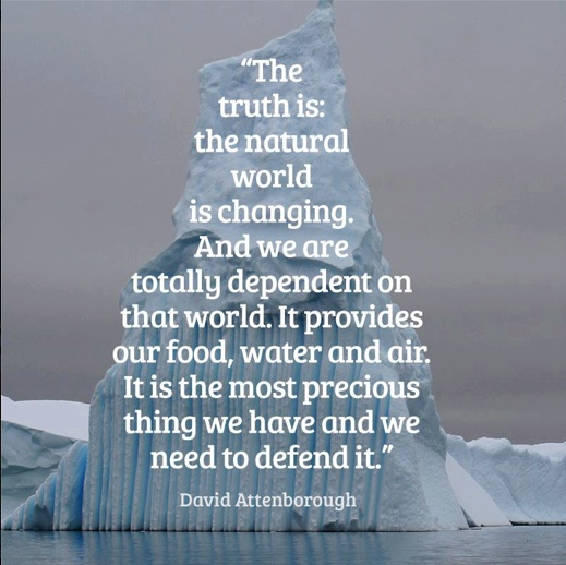 68 Best Facing Our Risk Of Cancer Images On Pinterest: 17 Best Images About Environmental Issues On Pinterest