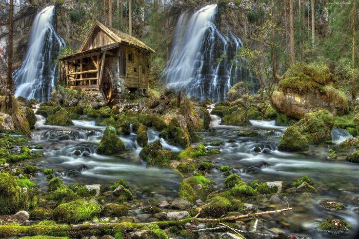 Las, Wodospady, Młyn, Rzeka, Kamienie