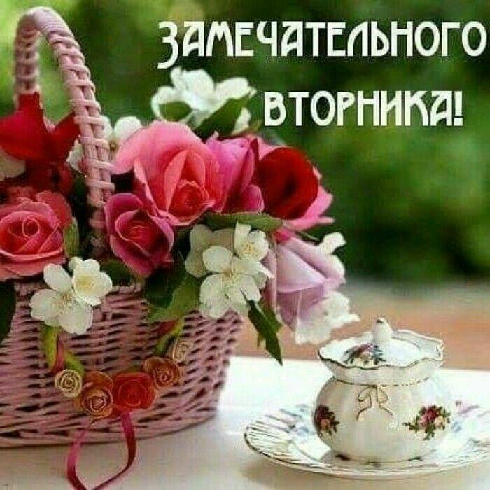 картинки прекрасного вторника с добрым крупный россии фотобанк