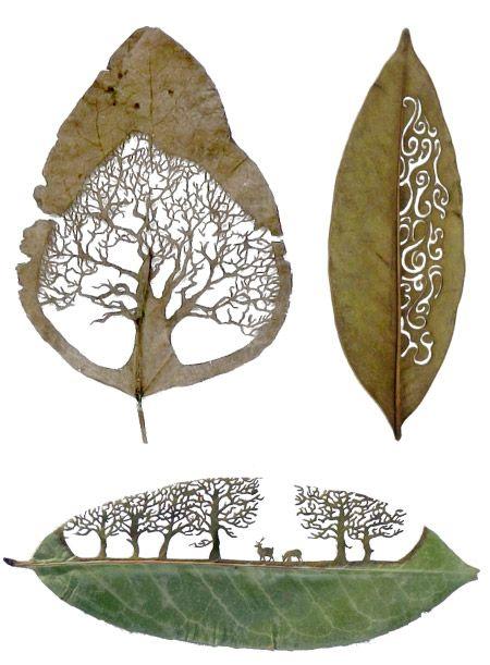 Hojas de árboles troqueladas con ilustraciones y motivos.