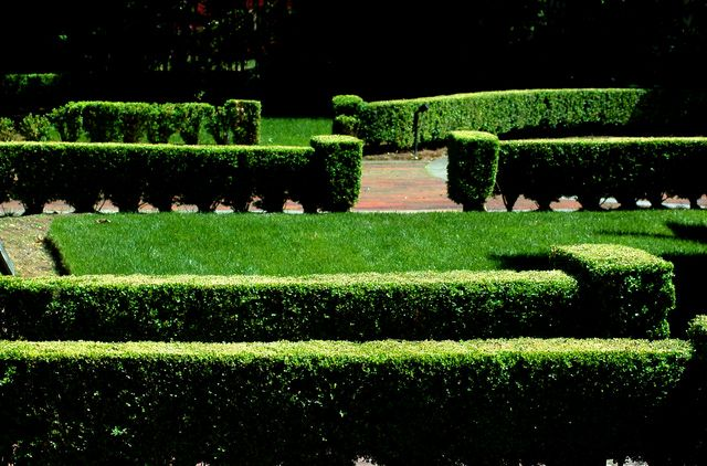 Formal Landscaping Proves Relevance of Geometry: Boxwood hedges on an estate: indubitably formal.