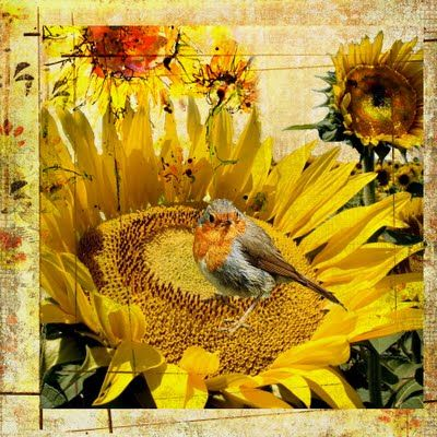 Sunflower Challenge.  Checkout the blog for more sunflower inspiration