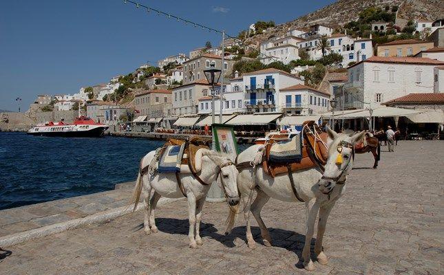 Τα γαϊδουράκια της Ύδρας http://diakopes.in.gr/the-experts-way-blog/article/?aid=209783 #hydra #island #greece #travel