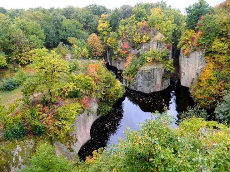 Fotó itt: Sárospataki (Megyer-hegyi) Tengerszem - Google Fotók