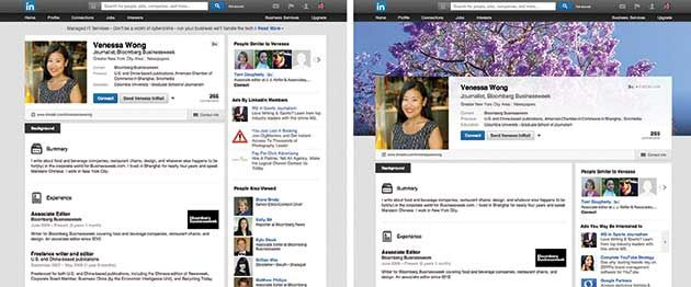LinkedIn to Let Users Bedazzle their Profile Pages - Businessweek