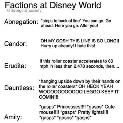 Factions at disney world