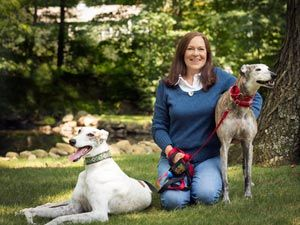 greyhound lovers dating The average lifespan of a greyhound is 12 to 15 or more years greyhounds are not guard dogs being bred specifically to be even-tempered and good natured, they are inherently well.