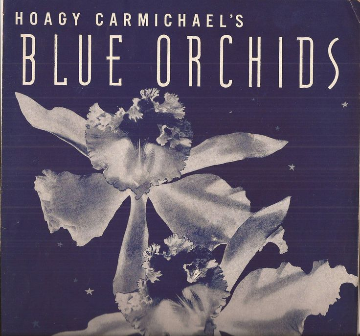 Hoagy Carmichael's Blue Orchids, Vintage Sheet Music, Piano Music, Musical Home Decor, Dark Blue Cover Art, Blue and White Orchid Art by BettywasaBombshell on Etsy