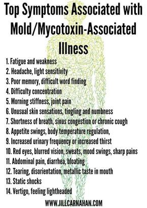 Is Toxic Mold Exposure The Cause Of Your Symptoms