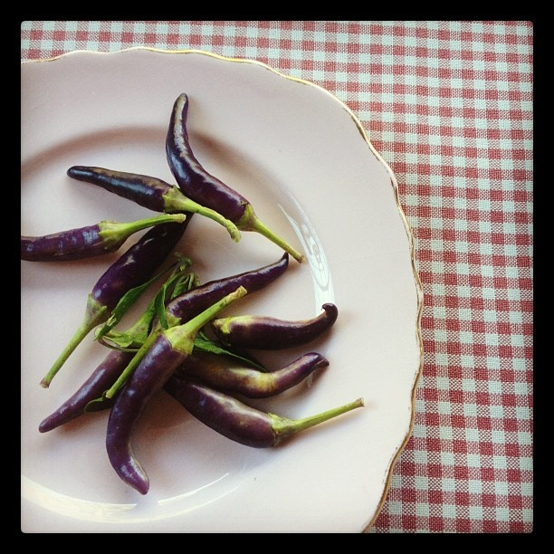 Mascerade chillies from a customer's garden. Starlings Cafe.