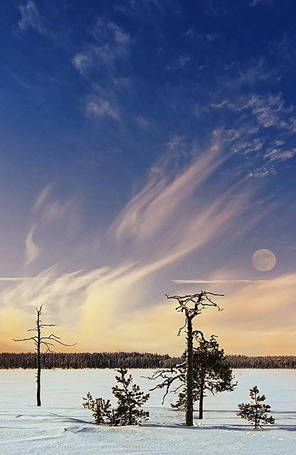 Moon and silky sky, Honkakylä, Finland