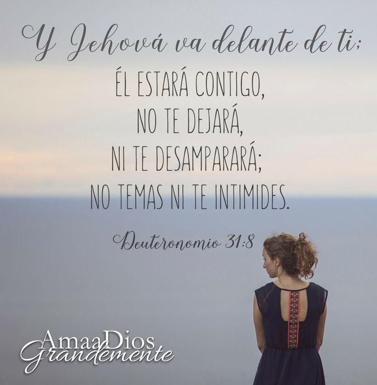 Como podemos orar por ti? #ElreyDavid #Salmos #DavidBiblia #AmaADiosGrandemente…