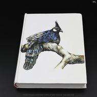 Sketch bird-book journal notebook-320 page-hard cover and back