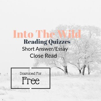 Into the Wild Reading Short Essay Reading Quizzes | TpT