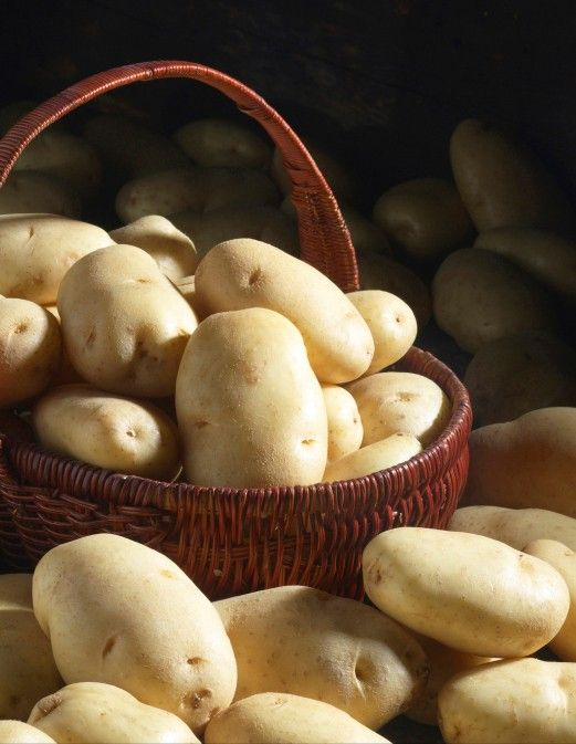 Alimentos que não devem ir à geladeira  (batata, cebola, alho, tomate, café, abóbora, melão, pimentas, mel...)