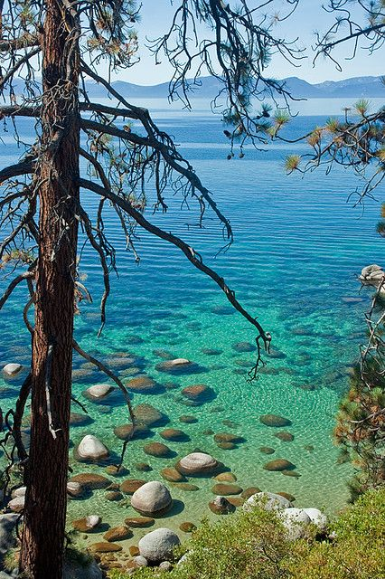 Hidden Beach, Lake Tahoe by TomFalconer, via Flickr