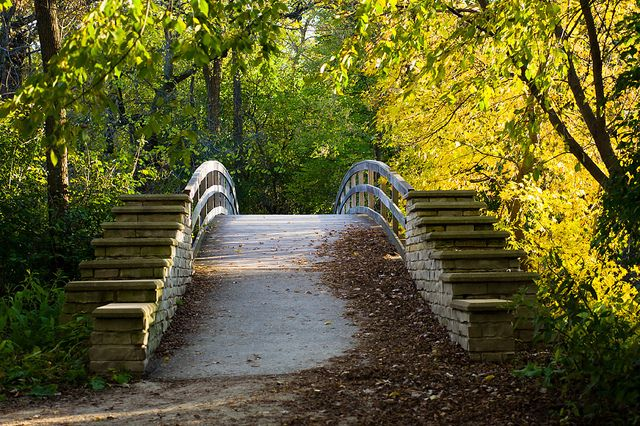 Fullersburg Woods Forest Preserve - Oak Brook, IL | Flickr - Photo Sharing!