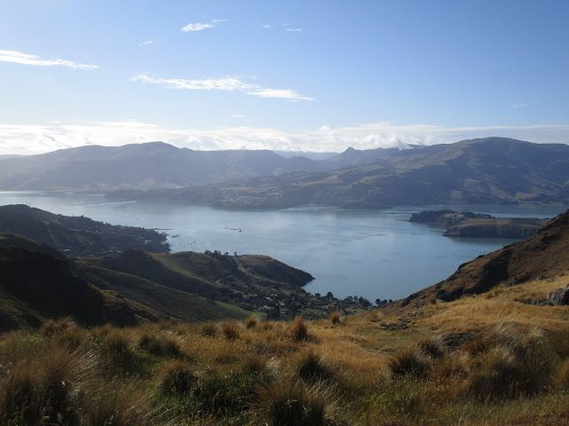 Let it Roll: Morning in Port Hills