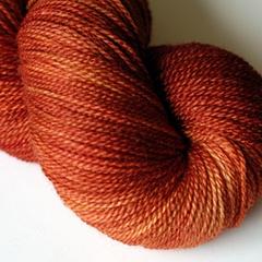 Sweet Georgia Yarns - Silk crush sock in Cayenne colorway. (Has a fiber club, too!)