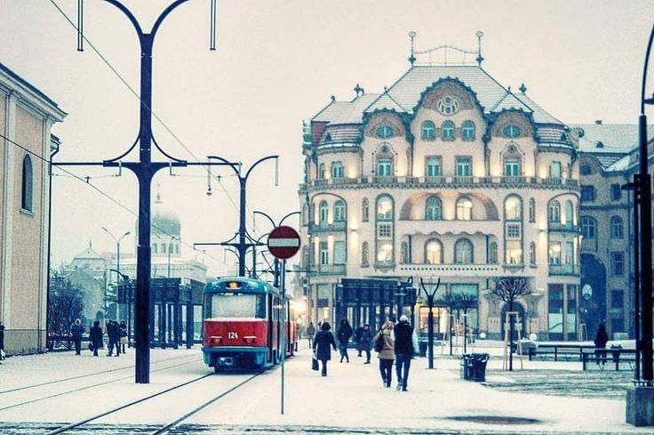 Dimineți de decembrie.  Fotograf: Darius Pavel