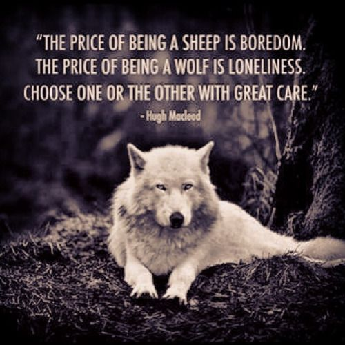 Image result for wolf pack quotes