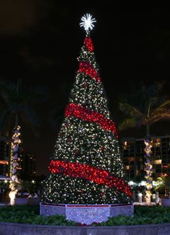 15 best christmas lights images on pinterest christmas lights indoor outdoor commercial christmas trees mozeypictures Choice Image