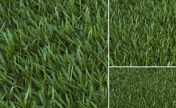 SketchUP V-Ray Proxy Grass - 3D Architectural Visualization & Rendering Blog
